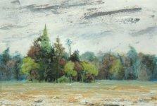 early autumn in Burnham Beeches, 15x21cm