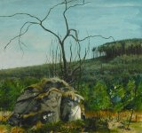 in the Bin Forest by Huntly, 14x15cm