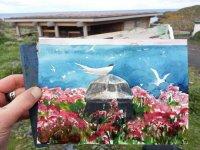 Isle of May, May-June 2015 (11)