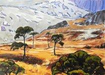 Scots pines, West Highland Line, 25x35cm