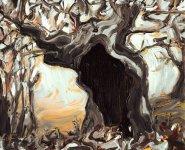 ancient oak, 19x23cm